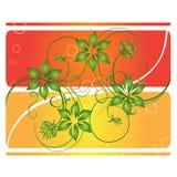 цветки карточки курчавые сверх Стоковое Изображение RF