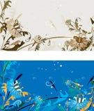 цветки карточки Стоковые Фото