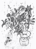 цветки клоуна пука Иллюстрация вектора