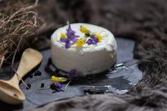 Цветки козий сыра и весны Стоковое Изображение RF