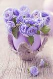 Цветки колокольчика Стоковые Фото
