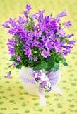Цветки колокольчика Стоковое Фото
