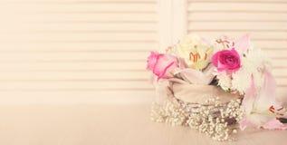 цветки корзины изолировали белизну Стоковые Изображения RF