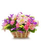цветки корзины красивейшие изолировали белизну Стоковое Изображение RF