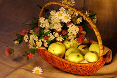 цветки корзины яблок зреют Стоковые Фотографии RF