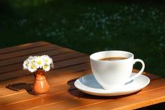 цветки кофе Стоковое Фото