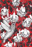 Цветки колибри и фуксии иллюстрация штока
