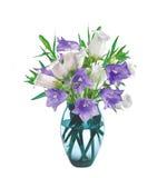 Цветки колокола в вазе изолированной на белизне Стоковое фото RF