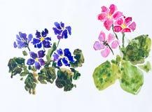 цветки крася акварель Стоковые Изображения RF