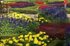 Цветки кровати Стоковые Фотографии RF