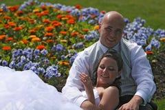 цветки кровати Стоковая Фотография