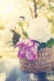 Цветки лета в свете сумрака стоковая фотография rf