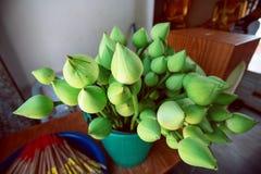 Цветки лотоса макроса и ладан установили для религиозной церемонии Стоковое Изображение