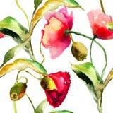 Цветки мака безшовной картины красивые Стоковая Фотография RF