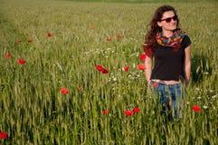 Цветки мака Стоковое Фото