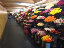 Цветки метро Стоковые Фото
