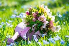 Цветки морозников в розовой моча консервной банке стоковые изображения rf