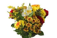 Цветки над белизной Стоковые Изображения