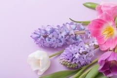 Цветки на бумажной предпосылке стоковая фотография