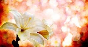 Цветки на винтажной предпосылке стоковая фотография rf