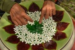 Цветки на воде стоковые фото