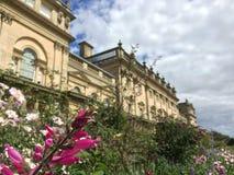 Цветки на доме Harewood, Лидсе, Западном Йоркшире, Великобритании Стоковые Фото
