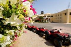 Цветки на заднем плане припаркованного ATVs Стоковые Фото