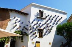Цветки на здании Стоковые Изображения