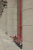 Цветки на окне строить с колонками Стоковое Изображение