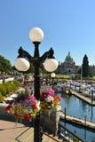 Цветки на портовом районе ориентир ориентира Виктории, Виктории Стоковое Изображение