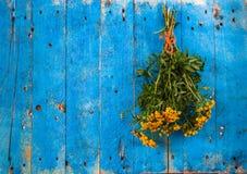 Цветки на предпосылке природы голубой деревянной Стоковое Фото