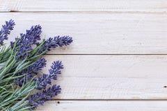 Цветки на древесине сбора винограда Стоковые Фотографии RF