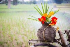 Цветки на старой корзине Стоковое Изображение