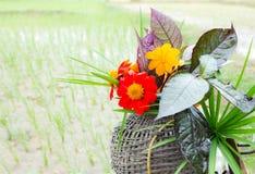 Цветки на старой корзине Стоковая Фотография