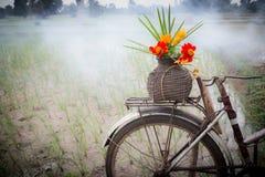 Цветки на старой корзине Стоковые Фото