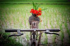 Цветки на старой корзине Стоковые Изображения