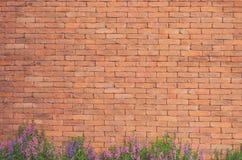 Цветки на текстуре кирпичной стены стоковое фото rf