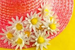 Цветки на Bonnet стоковое изображение