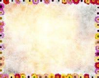 Цветки обрамляют в задней части grunge, Стоковые Изображения RF