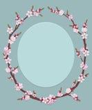 цветки обрамляют овал Стоковое Изображение