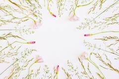 цветки обрамляют свежую Минимальный плоский дизайн Взгляд сверху Стоковое Фото