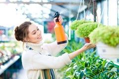 Цветки довольного милого садовника молодой женщины распыляя Стоковая Фотография