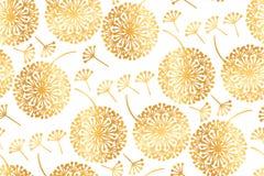 Цветки одуванчика элегантного золота геометрические на белизне Стоковые Изображения RF