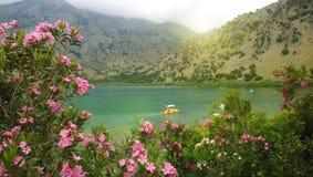 Цветки олеандра и взгляд озера Kournas в пасмурном весеннем дне на острове Крита Катамаран на озере стоковое изображение