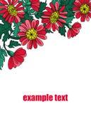 Цветки орнаментируют с красными листьями Стоковые Фото