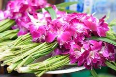 Цветки орхидеи для Будды Стоковые Фотографии RF