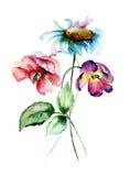 Цветки пиона, стоцвета и тюльпана Стоковые Фотографии RF
