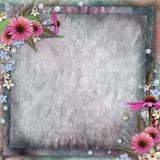 Цветки поздравительной открытки Стоковое Фото