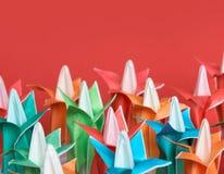 цветки поля Стоковая Фотография RF