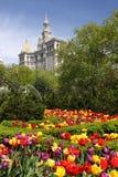 цветки понижают manhattan Стоковое Фото